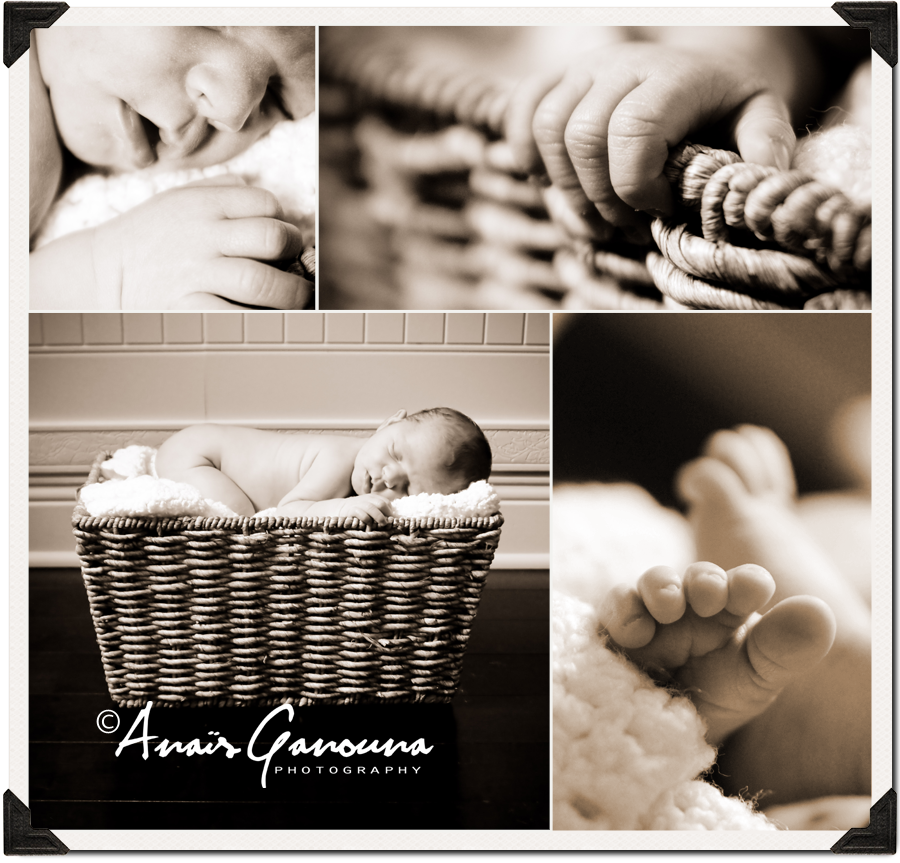 MainBlog Miami Newborn Photography Session